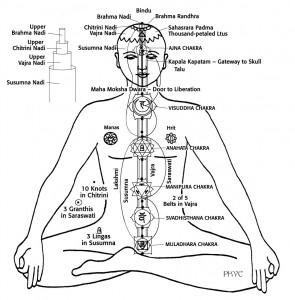 Centrālais kanāls un tā struktūra